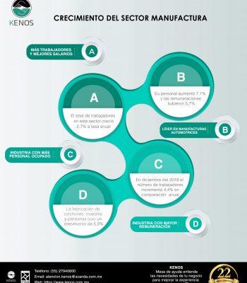 Infografía Manufactura